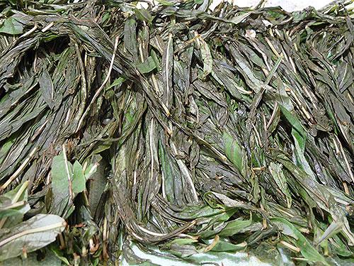 Ферментированные листья Иван-чая.