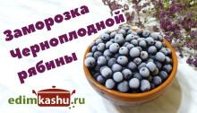 chernoplodnaya-ryabina